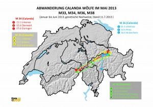 Karte Abwanderungen    Calandawölfe_Jan-Juni 2013 Final